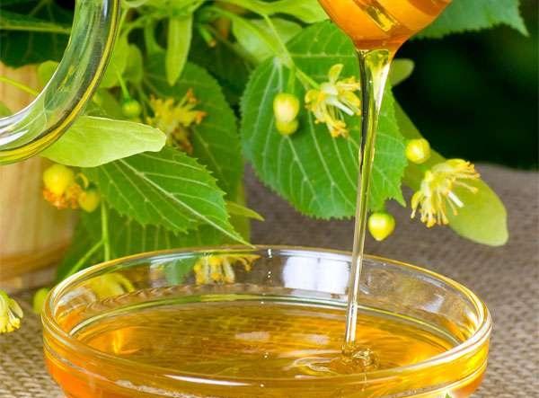 Мёд липовый и каштановый обладяют удивительными свойствами