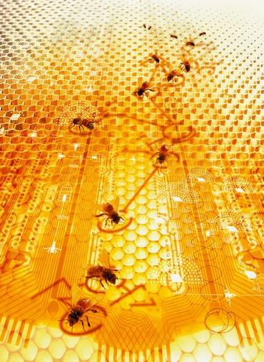 Обзор химического состава мёда